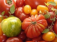 Sortenvielfalt