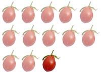 Nur jede 13. Tomaten in Deutschland stammt aus heimischer Produktion